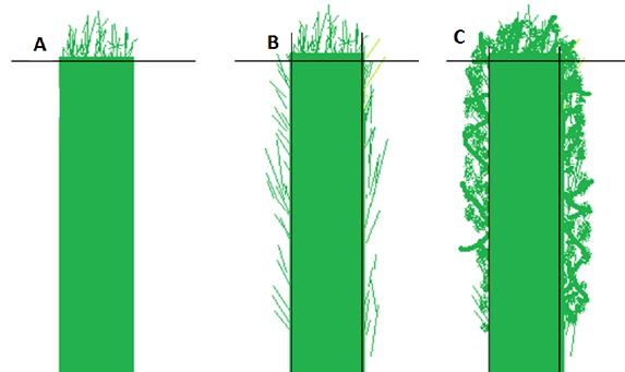 Recorte de setos de jardines en valencia - Setos para vallas ...
